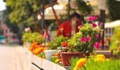 Tips för din sommarrestaurang